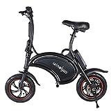 Windgoo Bicicleta eléctrica Plegable Ruedas de 12',Batería de Litio de 4400-36v,Ebike para Adulto (B15-Black)