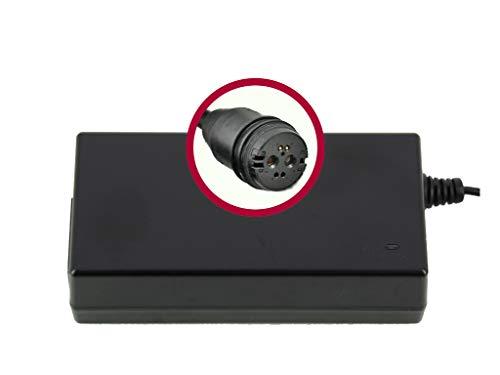 WSB Battery Cargador de batería para bicicleta eléctrica BMZ de ion de litio, 42 V, 2 A, conector Rosenberger para Alber, Green Mover, ZEG, Bulls