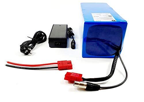 TZIPower Batería para bicicleta eléctrica de 48 V y 50 Ah, de PVC, con marco de iones de litio