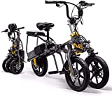 Bici electrica, 14' Electric trekking / bicicleta de ruta, de 3 ruedas plegable bicicleta eléctrica for los adultos, 350W extraíble de litio de la batería de 48 V del motor ligero de bicicletas de mon
