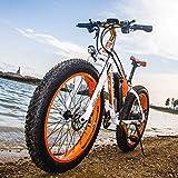 RICH BIT RT022 1000W 48V 17Ah Bicicleta Ciclo Cruiser EBike Bicicleta Eléctrica * Batería de alta Capacidad 7 Velocidades Suspensión Horquilla Mecánica doble Bicicleta Eléctrica de 26 Pulgadas
