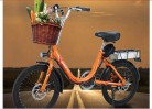 Hold E-Bikes Scooter eléctrico 48V 250W 20 Pulgadas Dos Ruedas Bicicleta eléctrica naranja
